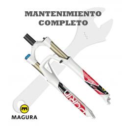Mantenimiento completo Magura Durin