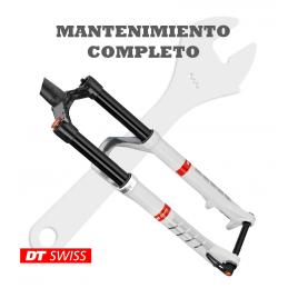 Mantenimiento completo DT Swiss Torsion Box